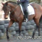 2002 training rmond 36