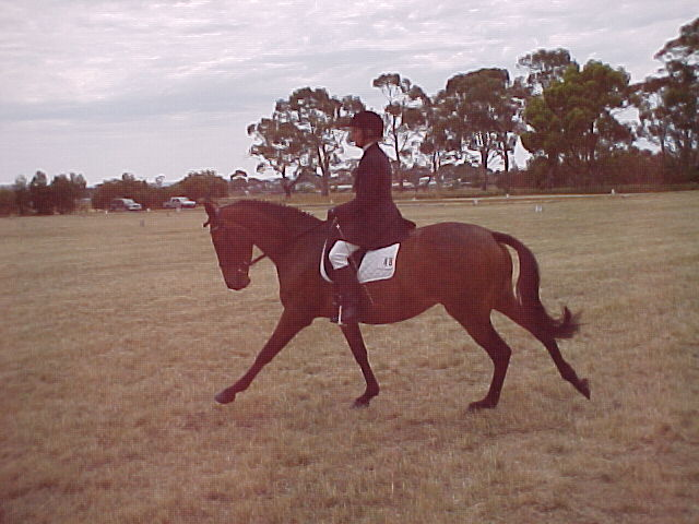 bella canter2004