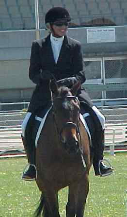 dressage can be fun