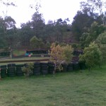 roundyard2