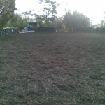 rubber surface arena