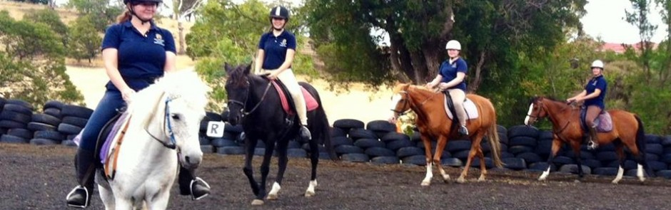 Horse Riding Tasmania | Horse Riding Hobart